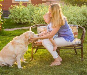 Perro feliz, ¿cómo saber si nuestra mascota es feliz?