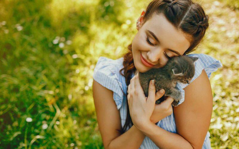 Longevidad felina. ¿Cuántos años pueden vivir los gatos?
