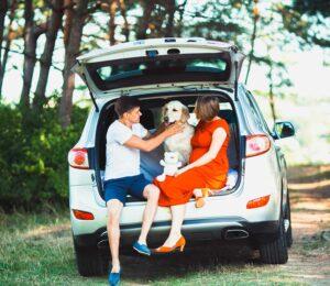 Viajar en coche con nuestras Mascotas. Trucos.
