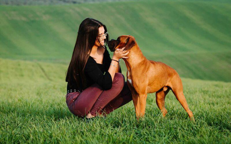 ¿Tu #Perro te quiere? Identifícalo