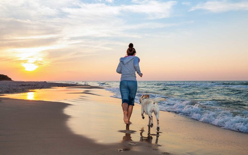 #Canicross y Nutrición canina. Todo lo que debes saber