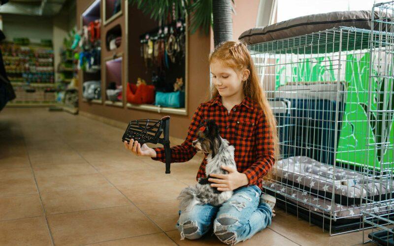 ¿Cómo poner un #bozal a un #Perro?